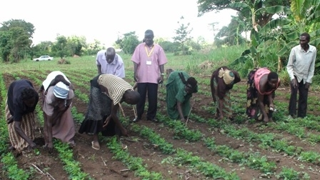 Training in Modern Agriculture